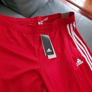 Adidas Women's Tiro19 training pant Large